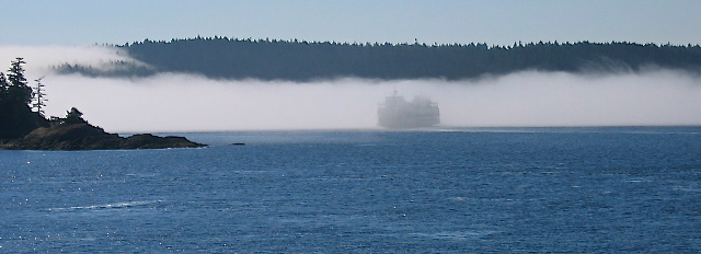 Foggy Ferry