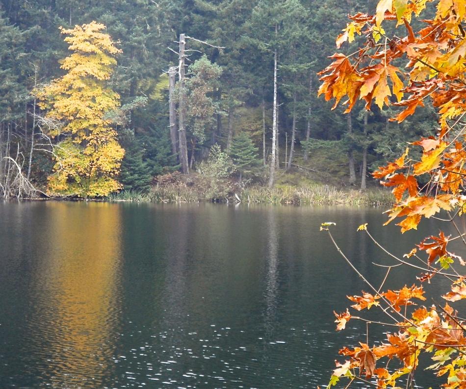 Lawson's Pond
